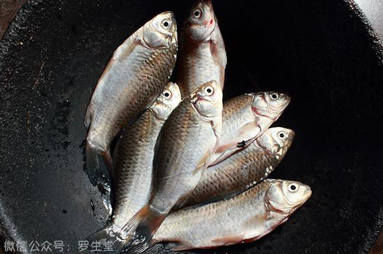 鲫鱼里外清理干净,把表面水分用厨纸擦干备用