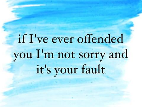 If I've ever offended you I'm not sorry and it's your fault.