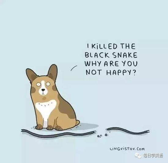 7. I killed the black snake. Why are you not happy?