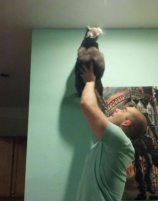 13. This Is How My Boyfriend And His Cat Catch Bugs Together.