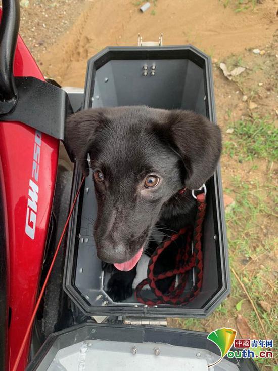 周浩带着爱犬骑行,爱犬被放在摩托车左侧的箱子里。本人供图