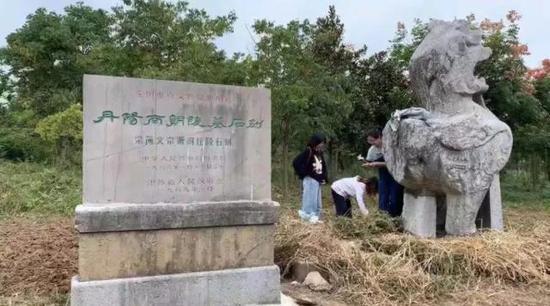 大学师生盗拓江苏国宝南朝石刻 警方已介入调查