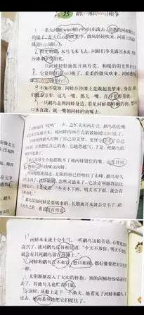 黄圣凯提出质疑的五年级语文课本
