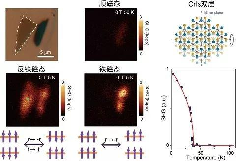 双层三碘化铬的二次谐波光学显微图