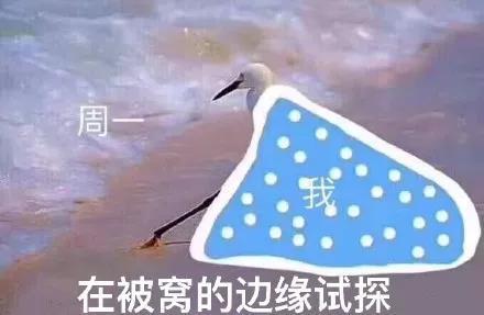 (冬天更应景)