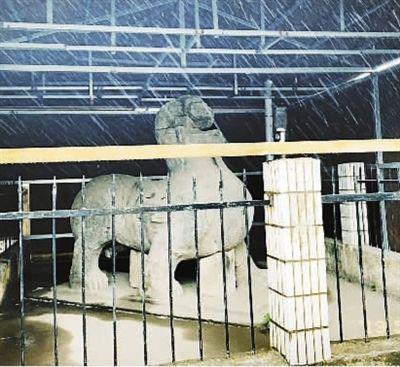 大雨中的南京初寧陵石刻 奚牧涼攝