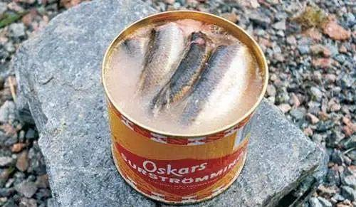 瑞典的鲱鱼罐头