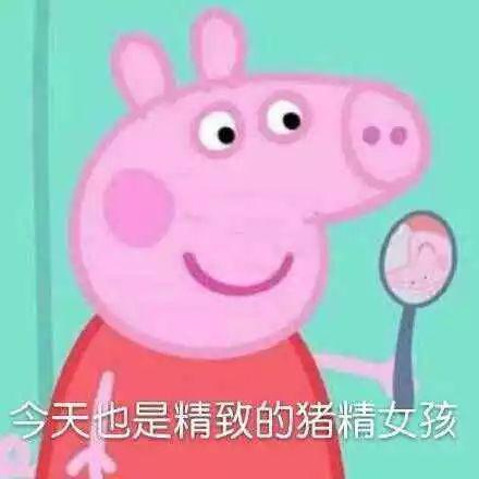 因为《小猪佩奇》里情节