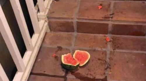 学生丢的西瓜。(家长Cathleen Falsani供图于美国《世界日报》)