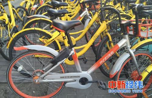 路边停放的共享单车 中新经纬刘虹利摄