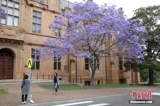 华媒:未来在澳上大学成本激增 预计10年内涨2成