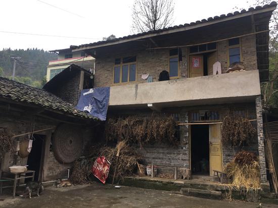 袁大海的老家。 本文图片均为澎湃新闻记者 王鑫 图