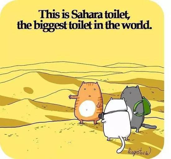 这就是撒哈拉沙漠