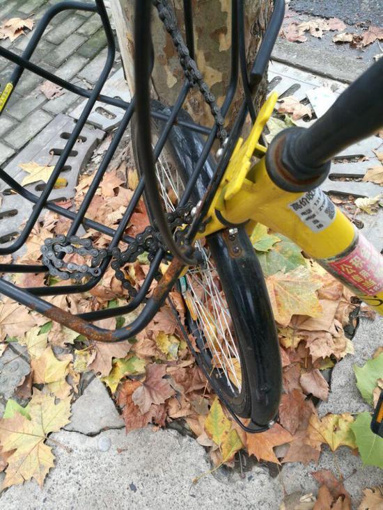 中学一堂化学课程 找到了减少共享单车投放量的办法