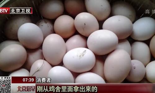 "BTV新闻曝光:常吃""三无蛋""可能危害您的健康"