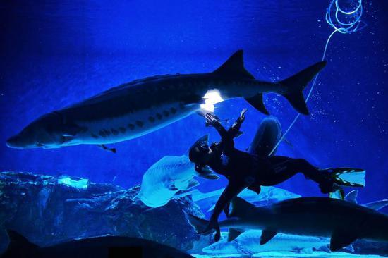 中华鲟保护科普宣传月在北京海洋馆正式启动