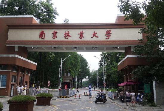 南京林业大学,蒋华松在这里工作了三十余年。新京报记者王双兴摄