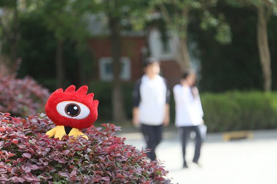 上海领科教育的学生漫步在校园