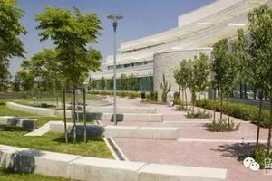 USNEWS医学专业排名第一的美国大学
