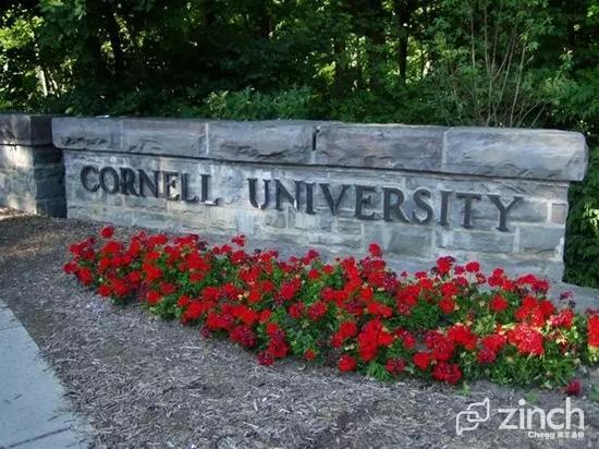 康乃尔大学