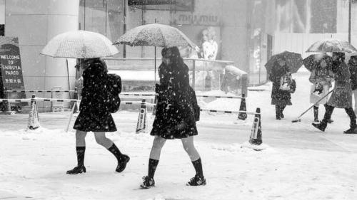 日本女生冬天穿短裙露大腿 幼儿园孩子都穿得少