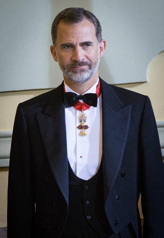 西班牙的费利佩六世国王