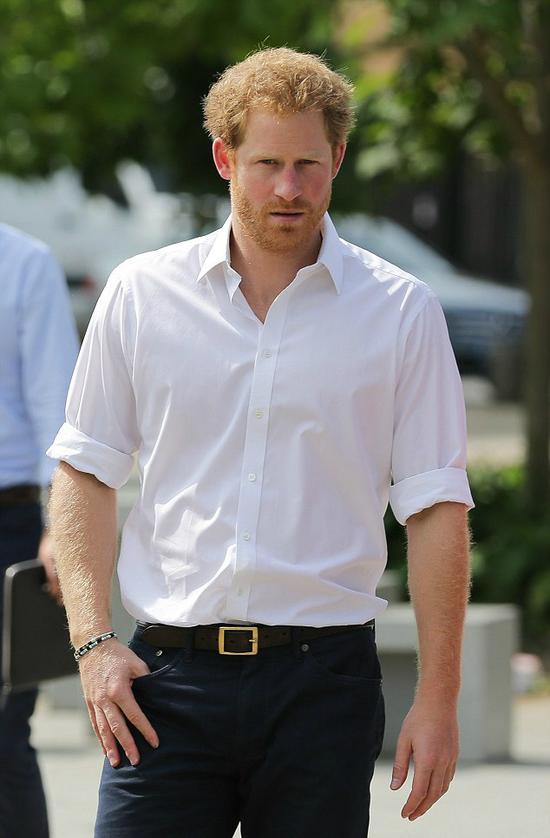 英国王室大使哈里王子