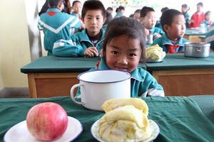 为何总有家长吐槽免费营养餐?