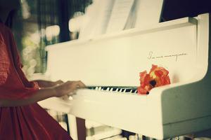 音乐考生不可错过 解析钢琴艺考的十大误区
