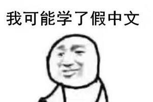 纽约高中中文试卷流出 中国网友自称学到假中文