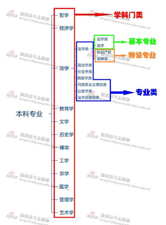 图1:学科大类、专业类与专业