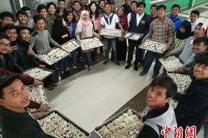 2016年度中国逾54万人出国留学 44万人来华留学