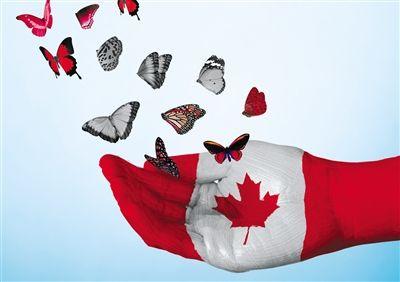加拿大移民之项目挑选
