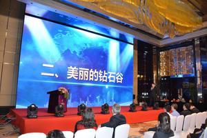 津桥国际教育高峰论坛开幕 发布钻石谷庄园项目