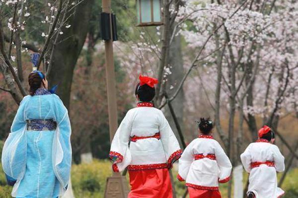 古装萌娃樱花树下学传统礼仪