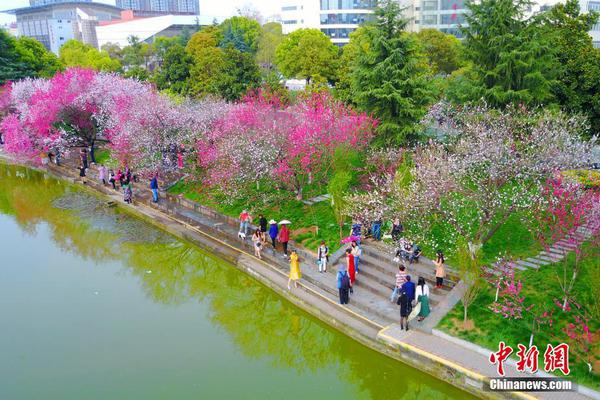 """三峡大学""""桃花朵朵开"""""""
