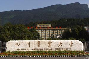 四川农业大学自主招生:计划招生人数为120名