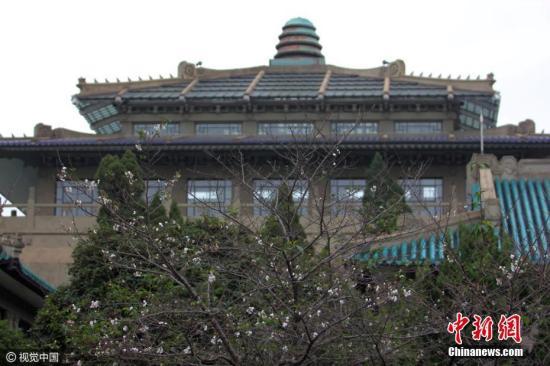 资料图 武汉大学 图片来源:视觉中国