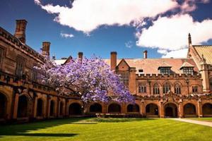墨尔本留学生境遇堪忧 学校削减经费