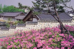 韩国青年不愿屈就中小企业 外国劳动者大幅增加