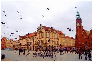 三本线上可攻读波兰王牌弗罗茨瓦夫理工大学