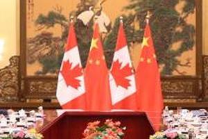 中国留学生加拿大失联事件 使馆:两人已被找到