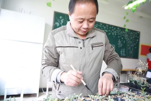 陈克飚摆弄教室的绿植