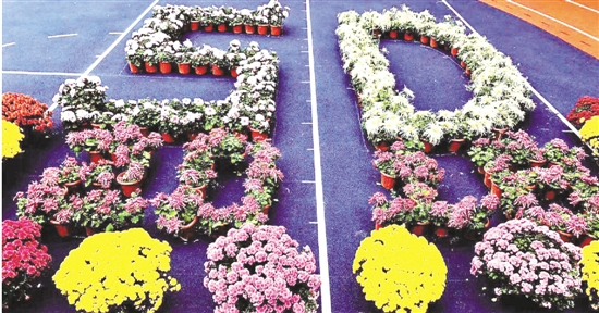 杭州时代小学今年实践课程:全校一起玩秋菊