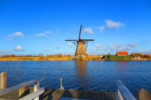 荷兰议员要求彻底改革移民融入考试 称应与时俱进