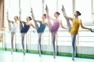 河南省2018年音乐、体育舞蹈类分数段统计表