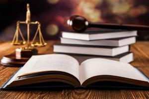 美加州圣县提供多语言法律咨询 助移民成为公民