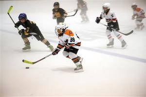 中俄元首观看青少年冰球赛引冰球界人士热烈反响