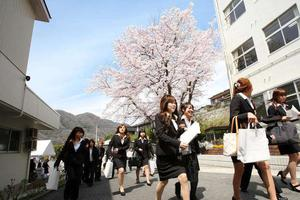 出国留学:日本申请学历认证需要哪些认证材料?