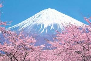 出国留学:在日本租房过程中会涉及哪些费用